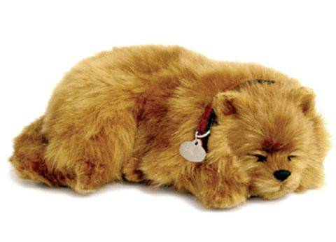 Yorkie PERFECT PETZZZ Il cucciolo che respira